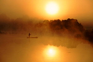Fisherman at dawn on River Bug, East Poland, Europe  -  Artur Tabor