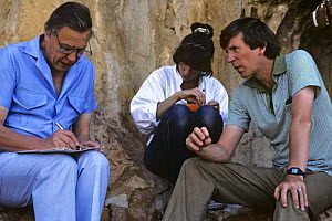 David Attenborough writing script with researcher Karen Bass and producer Andrew Neal, on location for BBC televsion programme ^The First Eden^, Spain, 1986  -  Diana Richards Cronk