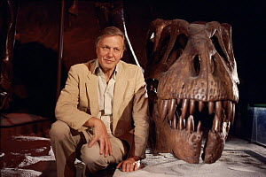 Sir David Attenborough with Tyrannosaurus Rex skull on location for  'Lost Worlds Vanished Lives' 1989  -  NEIL NIGHTINGALE
