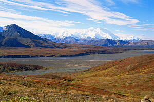 Snow topped Mount McKinley, beyond tundra and river plateau, Denali NP, Alaska, USA  -  Larry Michael