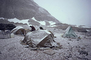 Film crew camp at Gentoo penguin colony Couveville Island, Antarctic Peninsula. On location for BBC series Life in the Freezer 1991  -  Peter Bassett
