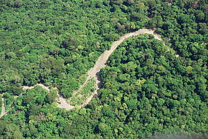 Aerial view of Pacific coast tropical dry forest in dry season, showing course of river during wet season. Santa Rosa National Park, Costa Rica  -  Nick Turner