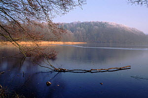 Lake Tornow frozen, Brandburg, Germany, Europe.  -  Christoph Becker
