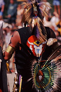 Back view of Native American in feather costume at Pow Wow dance. Wisconsin, USA  -  Larry Michael