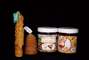 Honey and beeswax candles. Community Bee Culture Project, Pro Pueblo Foundation, Ecuador  -  Pete Oxford