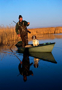 Wildfowl hunter in boat with dog, Camargue, France. Duck shooting  -  Jean E. Roche