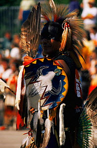 North American Indian, in native Sioux dress for pow wow, Wisconsin, USA  -  Larry Michael