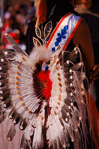 North American Indian in native Sioux dress for pow wow. Wisconcin, USA  -  Larry Michael