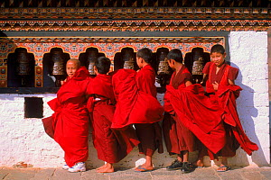 Monks turning prayerwheels. Punakha festival, Bhutan - Pete Oxford