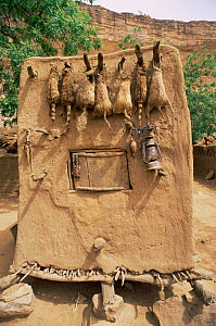 Dogon wildcat fetishes on grain store, Mali, North Africa  -  Grant McDowell