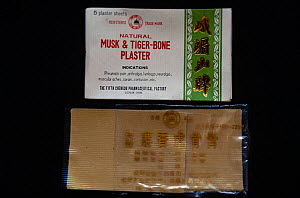 Chinese plasters made from Musk deer and Tiger bone. - Ashok Jain
