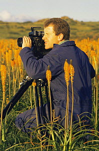 "Cameraman Tim Shepherd on location in South Africa, filming Bulbinellas for BBC television programme ""Private Life of Plants"", 1994 - NEIL NIGHTINGALE"