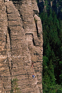 Rock climbers on cliff face, Saxony, Germany  -  Christoph Becker