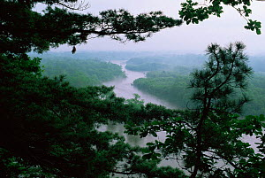 Looking down onto Birkin river with surrounding forests, Sikhote-Alin, Primorsky region, Far East Russia (Ussuriland).  -  Konstantin Mikhailov