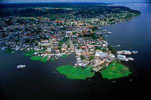 Aerial view of Tefe on banks of Amazon River, Brazil  -  Robert Fulton