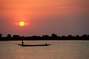 Fisherman on Niger river at sunset, Mali, West Africa  -  Grant McDowell