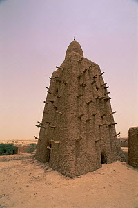 The old mosque, Timbuktu, Mali, West Africa  -  Grant McDowell