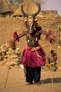 Dogon masked dancer, Mali, West Africa  -  Grant McDowell