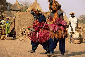 Dogon masked dancers, Mali, West Africa  -  Grant McDowell