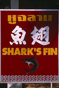 Restaurant sign for Shark fin soup, Penang, Malaysia.  -  Pete Oxford