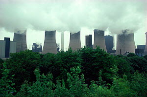 Cooling towers of coal fired power station, Ruhr, Germany - Martin Dohrn