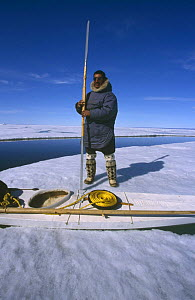Inuit hunter holding traditional harpoon next to kayak on ice floe, Canadian Arctic  -  DOC WHITE
