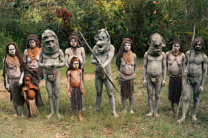 Asaro mud men, some wearing masks, Papua New Guinea 1991.  -  NEIL NIGHTINGALE