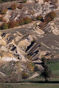 Soil erosion on hillside due to deforestation and overgrazing, Nympheon Mountains, Northern Greece  -  Constantinos Petrinos