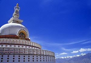 Shanti stupa, a Buddhist Peace Pagoda in Leh, Ladakh, North India  -  Nick Barwick