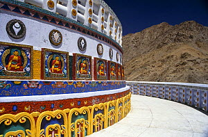 Shanti stupa, a Buddhist Peace Pagoda in Leh, with the Kangri Mountain range in the background. Ladakh, North India  -  Nick Barwick
