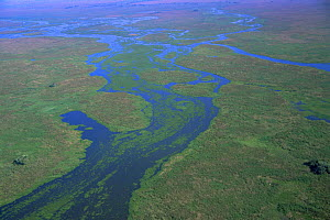Aerial view of Pantanal landscape, in wet season, Brazil, South America  2000 - Robert Fulton