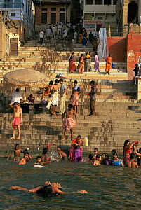 Daily life on the Ghats besides the holy Ganges, Varanesi / Benares, Uttar Pradesh, India  -  Nick Barwick