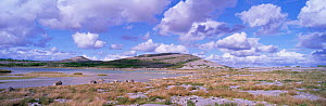 Mullach mor limestone pavement and turlough, The Burren, County Clare, Ireland / Eire  -  DAVID TIPLING