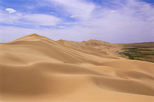 Hongoryn els or singing sands dunes up to 800m, Gobi desert, Mongolia  -  Pete Oxford