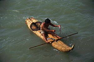 Fisherman in traditional reed boat with bamboo paddle Pimental, Pacific coast, Peru, South America  -  Karen Bass
