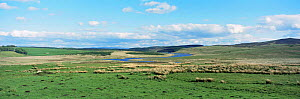 Panoramic view of Alwen reservoir with improved upland pasture, near Denbigh, Gwynedd, North Wales, UK - Mike Potts