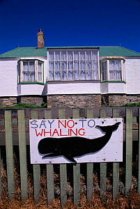 Anti whaling sign outside house. Port Stanley,  East Falkland Islands  -  Pete Oxford