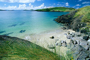 Derrynane bay with sandy cove, Kerry,  Republic of Ireland  -  Tim Edwards