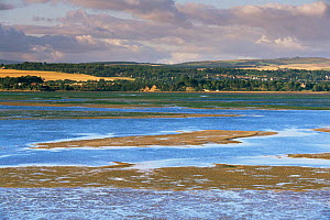 Tidal mudflats in the Montrose basin, Angus, Tayside, Scotland, UK  -  Geoff Scott-Simpson