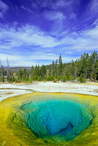 Morning glory pool, Old Faithful geyser, Yellowstone NP, Wyoming, USA - Pete Cairns
