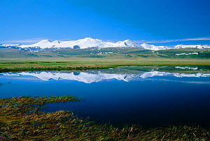 Altai mountains Plateau Ukok - View to China's Five Sacred Peaks from China / Russia border  -  Konstantin Mikhailov