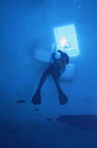 Research diver under hole cut in ice. Signy island, Antarctica. Model released.  -  Doug Allan