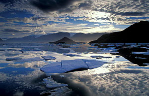 Arctic landscape with ice floes in Alexandra Fjord, Ellesmere Island Canadian Arctic, North America  -  David Noton