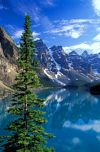 Looking over Morraine Lake to the Rockies, Banff National Park, Alberta, Canada, North America - David Noton