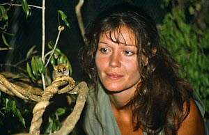 """Presenter Charlotte Unlenbroek with Pygmy mouse lemur {Microcebus myoxinus}, on location in Madagascar, filming for BBC television series """"Cousins"""", 1999  -  Bernard Walton"""