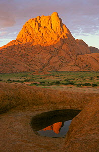 Peak of Spitzkoppe reflected in ephemeral pool, wet season. Damaraland, Namibia - Martin Gabriel