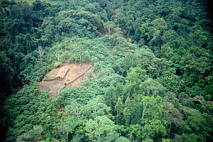 Aerial view of 'Swidden' agriculture, clearing in rainforest. Papua New Guinea 1992 - John Downer