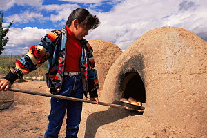 Native American girl taking out bread from traditional oven Taos Pueblo, New Mexico, USA 1990  -  John Cancalosi