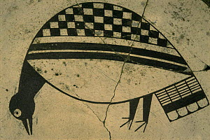 Mimbres bowl detail of bird 900-1150 AD, museum, Taos Pueblo, New Mexico, USA 1990  -  John Cancalosi