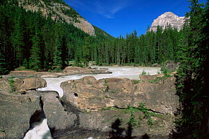 Natural rock bridge caused by water erosion, Yoho National Park, British Columbia, Canada  -  Louis Gagnon